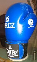 Competition Boxing Glove