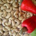 cashew nut w180 w 320