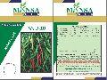 JWALA-333 Hybrid Chilli Seeds