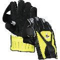 Cricket Wicket Keeping Gloves
