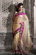 Beige Net Saree with Unstitched Blouse