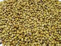 Coriander Seed (Parrot Quality)